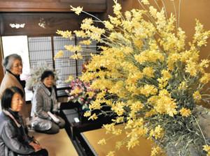 上品なつやが美しい「花まゆ」が並ぶ会場=名古屋市瑞穂区初日町の東山荘で