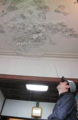 左官職人が天井に施した花、鳥などの漆喰鏝絵=西伊豆町で