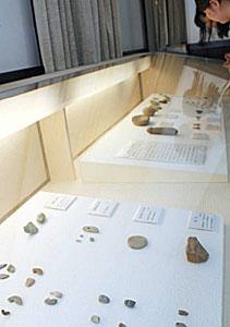 故堀本さんが集めた先史時代の石製品=金沢市出羽町の県立歴史博物館で
