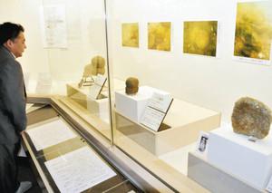 昨年発見された西浜千軒遺跡の遺物=長浜市の長浜城歴史博物館で
