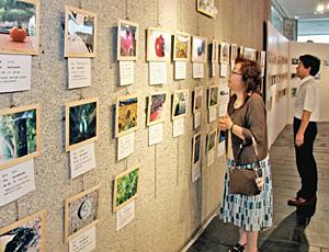 子どもの感性あふれる写真作品が並んだ会場=県教育記念館で