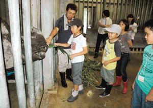 インドサイにエサを与える子どもたち=名古屋市千種区の東山動植物園で
