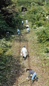旧神岡鉄道のレール周辺の草を刈るNPO会員たち=飛騨市神岡町で