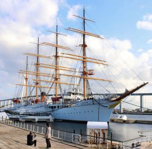 パークから移動しての修繕が計画されている帆船海王丸=射水市海王町の海王丸パークで
