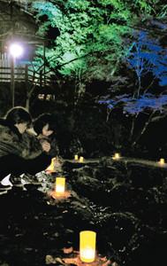 ライトアップされた紅葉。足元にはキャンドルが飾られている=名張市赤目町長坂で