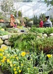 一足早く春景色が広がる「花の地球館」=可児市瀬田の花フェスタ記念公園で
