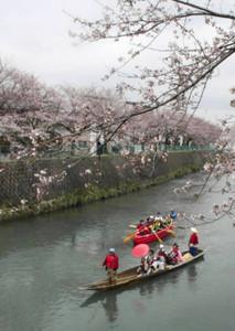 昨年4月に初めて実施された千保川の川下り「さくら・クルーズ」。今年も4月に行われる=高岡市木津で