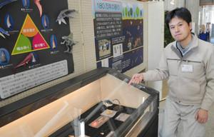ワニの化石や生態を紹介する学芸員の阿部さん=多賀町立博物館で