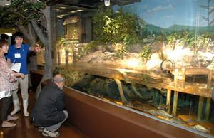 再現した田んぼやため池で身近な生き物の多様性を紹介する水槽=いずれも魚津水族館で
