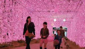イルミネーションのトンネルを歩く人たち=浜松市北区で
