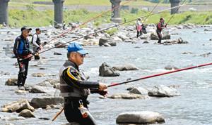 さおを並べてアユを狙う釣り人たち=福井市の足羽川大久保橋上流で