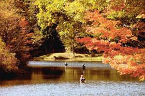 紅葉が見頃を迎えた秋本番の段戸湖=設楽町田峯で