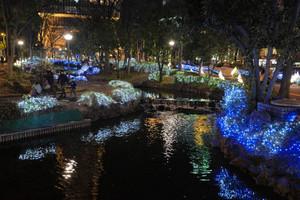 華やかなイルミネーションで彩られた久屋大通公園=名古屋市中区錦で