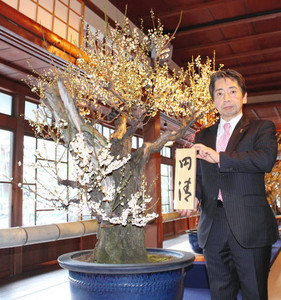「円清」と命名した盆梅脇に立つ黒田さん=長浜市港町の慶雲館で