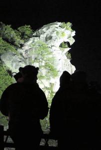 ライトアップで浮かび上がる世界遺産の獅子岩=熊野市の七里御浜で