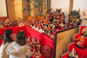 さまざまな時代の華やかなひな人形が並ぶ会場=美濃市泉町の旧今井家住宅で