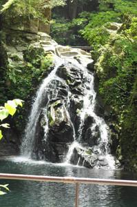「雨とく割引」を始める赤目四十八滝。千手滝は水量が増えると大迫力=名張市赤目町長坂で
