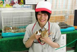 モルモットとカイウサギの育ち方の違いが分かるように工夫した展示スペース=富山市ファミリーパークで
